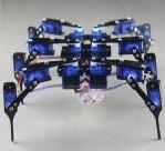 Six Feet Robot 6-Legged 18DOF Hexapod4 RC Mini Spider Robot Frame w/ 18 Servos AA Glue